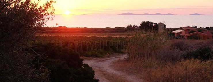 Roccabianca visitare Nord Sardegna
